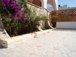 Villa Barbara a 100 metri dal mare con giardino
