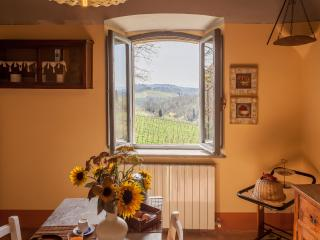 Hilltop Poolside 2 Bedroom Villa in Chianti, Gaiole in Chianti