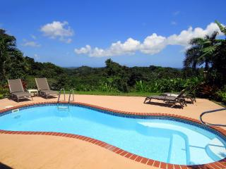 #1 Rated Rental in PR! Coquis Hideaway @ El Yunque, Río Grande
