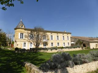 Beautiful 17th Century Chateau near St Emilion, Saint-Etienne-De-Lisse
