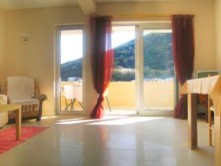 Nice & Friendly 1-bedroom apartment in Budva