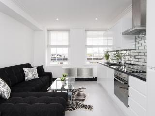 luxury 2 bed 1 bath holiday flat near Marble Arch, Londres