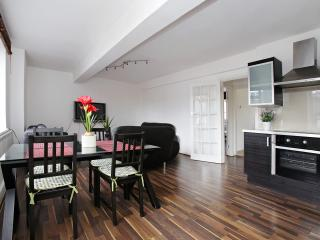 Holiday 2 bedroom flat in Mayfair, Londres