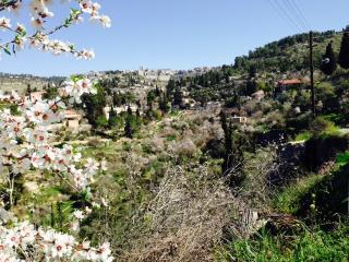 sweetnkarem  for 2pp, Jerusalem