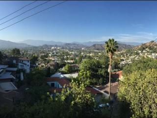 Mid-Century Modern Mountain Views - Eagle Rock LA