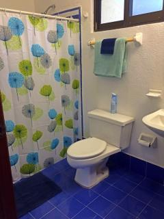 Spacious bathroom with large shower