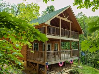 Log Cabin in Smoky Mountain, Pet Friendly and free Wifi