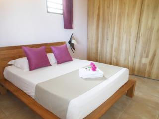 Chambre avec lit 160 x 200 et grand placard