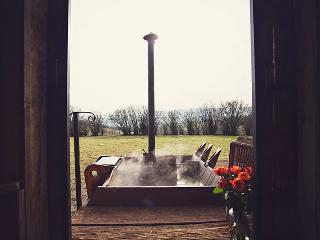 42954 Log Cabin in Hay-on-Wye, Clifford