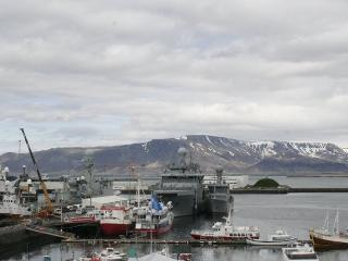 Charming Harbour, Reikiavik