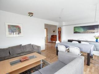 Modern Apartment, Reykjavik