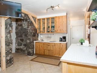 Eco 4 bedroom apartment, Reykjavik