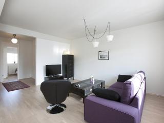 Grettisgata Two-Bedroom Apartment, Reykjavik