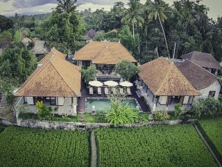 Luxury Villa in the rice field 6BR 2mn Ubud Center