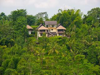 LAST MINUTE B&B DEAL - East Deluxe Room, Ubud