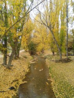 Otoño en la senda del río Alfambra
