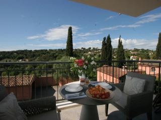 Luxury apartment, swimming pool, lovely views, Biot