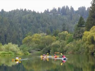 Haven on Earth! New rental! 5 min.stroll to River! Close to Golf/Wineries!, Guerneville