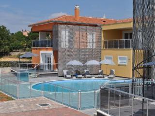 Apartment with pool Funtana (A1)