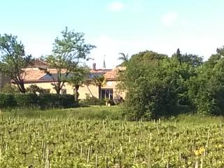 Pey'Cottage, sunny villa in the vineyard, Blaye