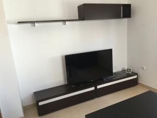 televisión de plasma y muebles de salon