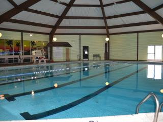 Amazing Luxury Estate with Private heated Pool and Volleyball court by Kalahari