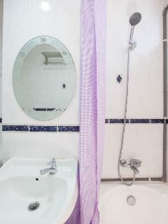 Shower and bath tub in the master bathroom, and the necessary safety bars.