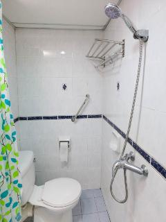 Safety bar, ample clothes rack and the shower head, in the second bathroom.