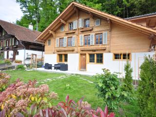 Lakeview Family Apartment.  Sleeps 12., Ringgenberg