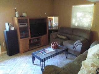 Tampa Home 10 Minutes From The Bay, Convention Cen, Pets welcome