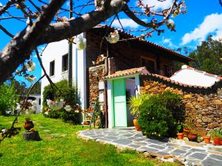 Cherry Cottage Vintage B&B - Old School Room, Figueiro dos Vinhos