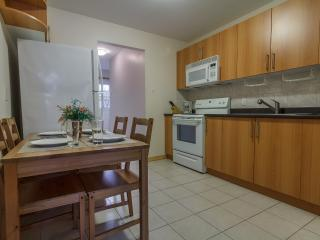 Charming 3BR Downtown Montreal