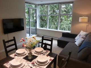 Great View! Modern 2BD condo, gym, quiet, @ SFU, Burnaby