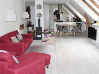 Big apartment in Frederiksberg with garden and parking - 3655