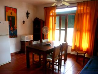 Nanche Tamarindo Apartment close to La Ropa