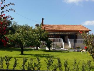Santy Villa, Gerani