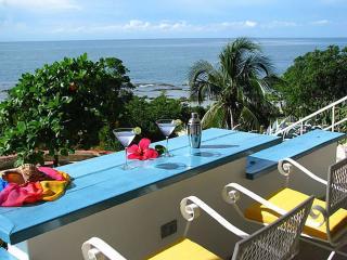 Villa Hikaru - with swimming pool and tennis court, Treasure Beach