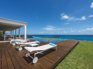 An Luxurious and Modern One Bedroom Villa on St Martin