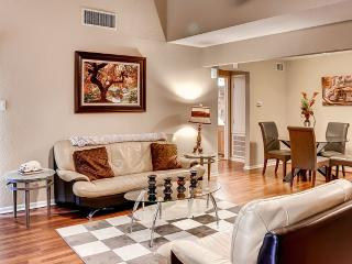 Close to Medical Center, Downtown, and Galleria, Houston