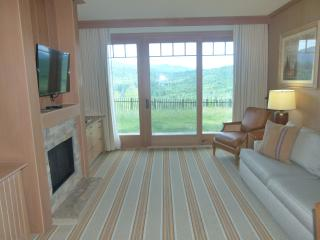 Suncadia Lodge 1 bed pet friendly river view condo
