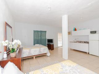 Sol del Atlantico 102, 1 Bedroom Studio Apartment, Arecibo