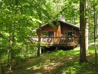 Whitman Woods:  Private Berkshire Vacation, 4 acre, Hancock