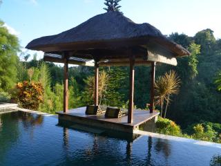 Riverside Villa, fantastic jungle view, Denpasar