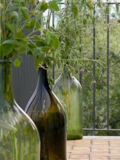 The house is immersed in nature with vineyards and olive groves all around.