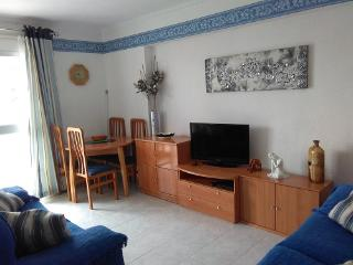 301 Benalmadena holiday rental