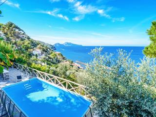 NEW! Villa with Pool and Sea Views, Pick Fruit from the Garden! Walk to Town and Beach, Massa Lubrense