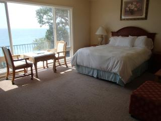 Beautiful Ocean Front Property (sleeps 8), San Clemente