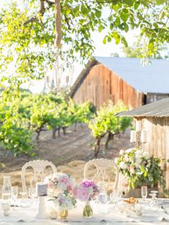 Testa Wedding Venue