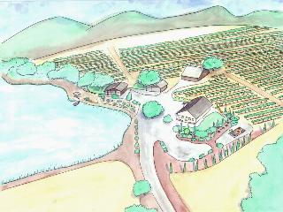 Site drawing by Kortney