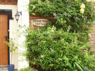 4*  Cottage set among cornfields of our farm, Ilketshall St Lawrence